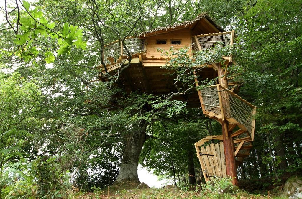 migratory tree house